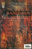Sandman Nº 23