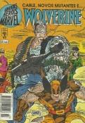 Grandes Heróis Marvel Nº 43 (1ª Série)