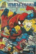 Grandes Heróis Marvel Nº 49 (1ª Série)