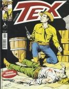 Tex Coleção Nº 306